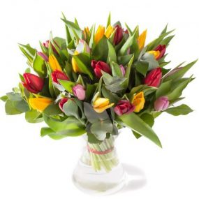 Vrolijke tulpen gemengd